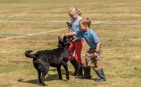 Stockfest dog show by Andrew Buchanan